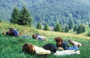 Die Bärwurz (Meum athamanticum) riechen und schmecken, auf einer Bergwiese im Harz. Bärwurz wird als Zusatz für Kräuterlikör und Kräuterquark verwendet, früher auch als vielseitig wirksame Heilpflanze