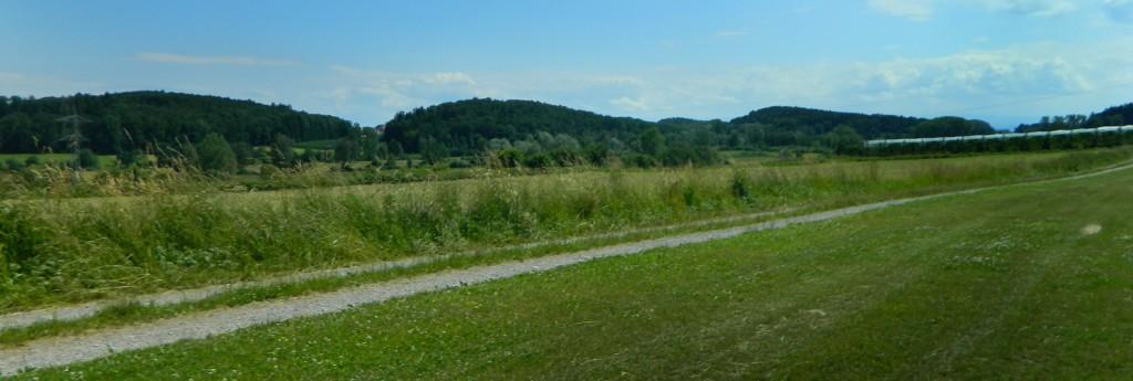 Raderacher Drumlinlandschaft, 22.6.2013 (Foto Probst)