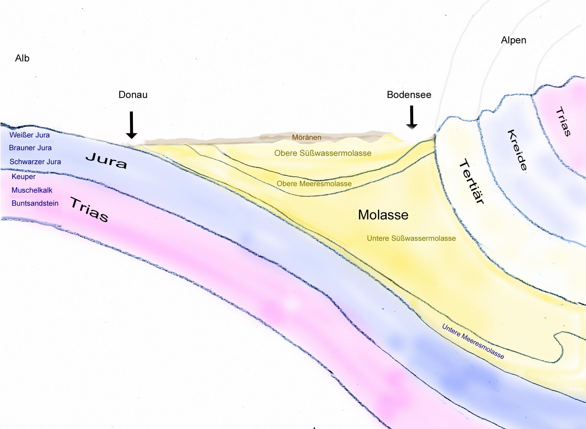 Geologischer Untergrund Oberschwabens (verändert nach Zier : Das Pfrunger Ried, 2.A.1997)