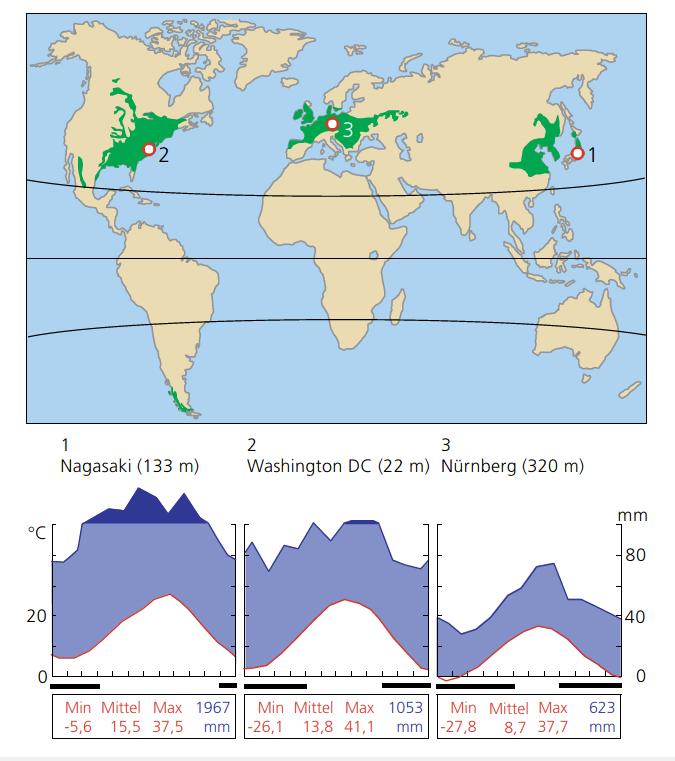 Laubwerfende Wälder der nördlichen gemäßgten Klimazone mit typischen Klimadiagrammen