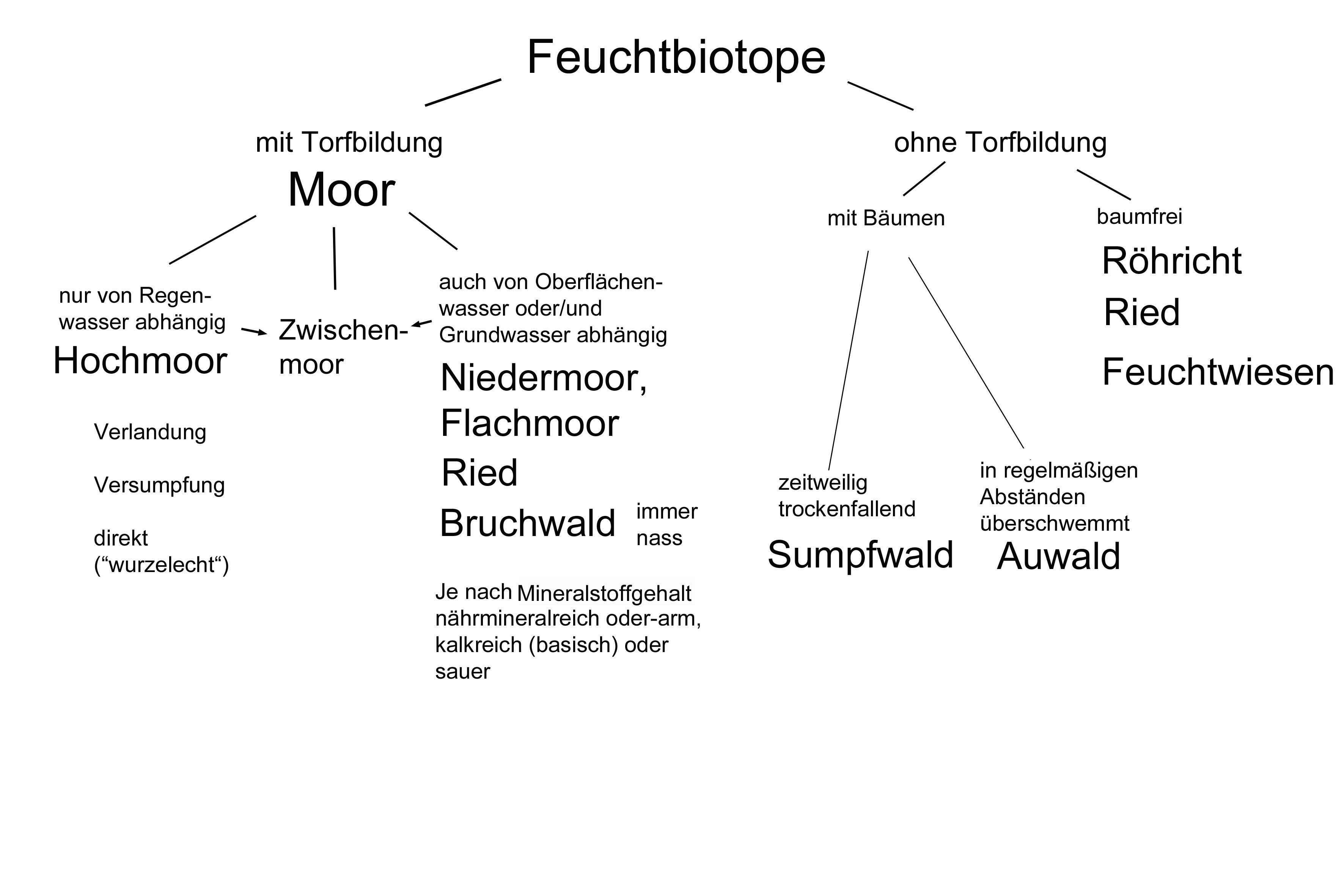 plan und kopie friedrichshafen